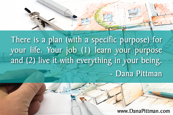 The Purpose for Your Life by Dana Pittman