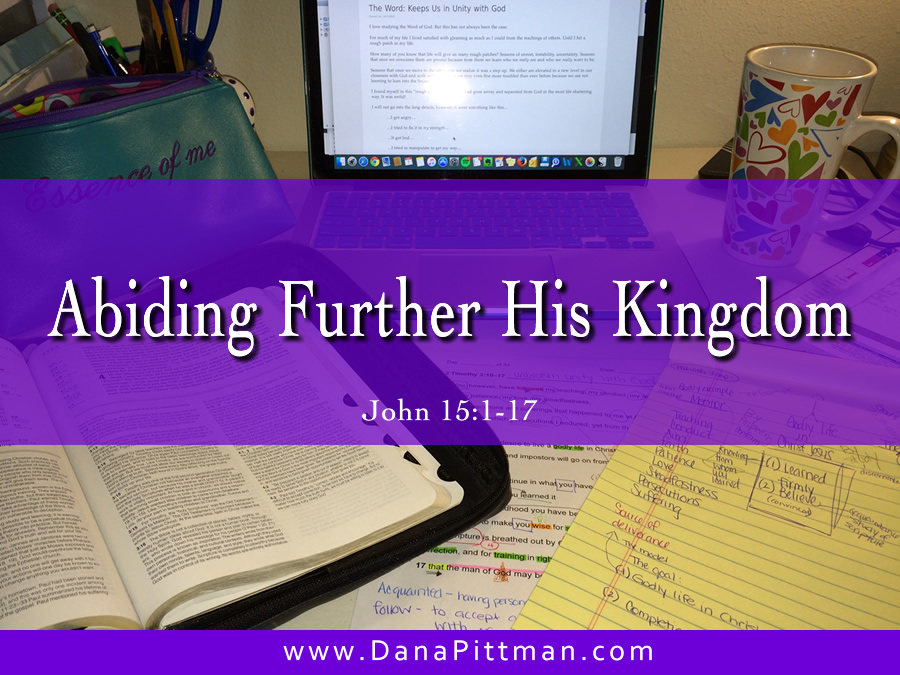 Day 8: Abiding Furthers His Kingdom | DanaPittman.com
